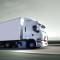 Obowiązki importerów i dystrybutorów